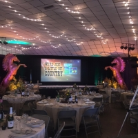 2017 Annual Awards Dinner