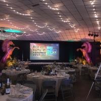 2017 Annual Awards Dinner