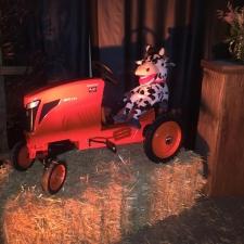 Kubota Tractor with Cow